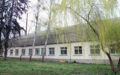 Пологовий будинок, селище Ворзель