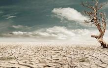 Человечество за 7 месяцев исчерпало годовые ресурсы Земли